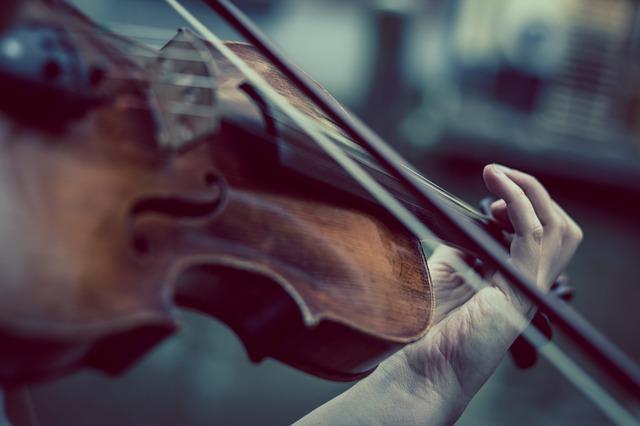 violin-374096_640